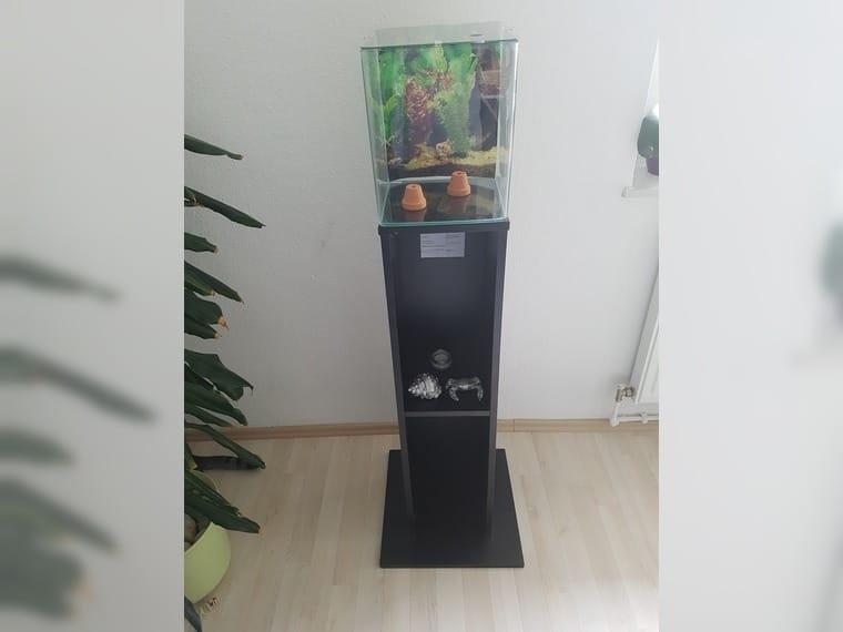 Eheim Nano Cube 16l mit… (Hannover) - Haustier-Anzeiger
