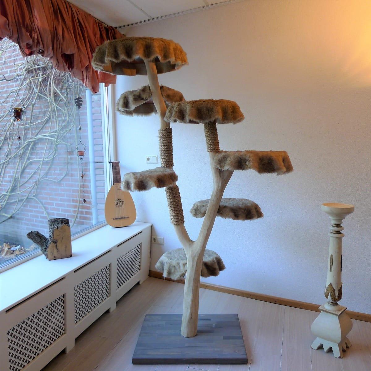 kleinanzeigen | | kratzbäume & kratzmöbel (kaufen & verkaufen