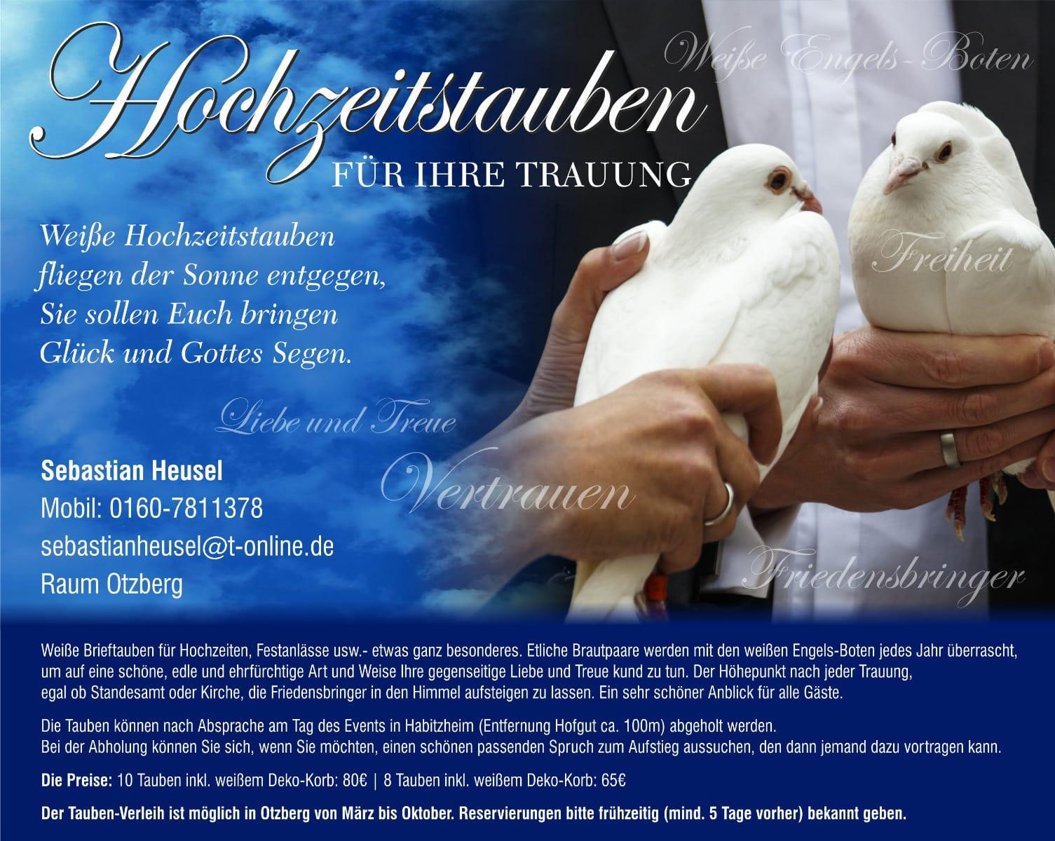 Hochzeitstauben Abzugeben Vogel Haustier Anzeiger